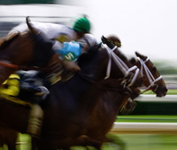 Handicapping Horse Racing Tracks, Post Positions and Conditions