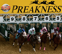 Preakness betting odds: Betting favorites to win