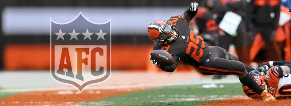 NFL AFC North odds pick Browns to win first division title in 30 years   News Article by SportsBettingOnline.ag